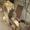 установка насоса А1ЖЛУ-5 #1602588