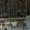 токарный станок са562-1500 с конусной линейкой 2008г.в. #1645852