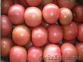 Свежие томаты и огурцы
