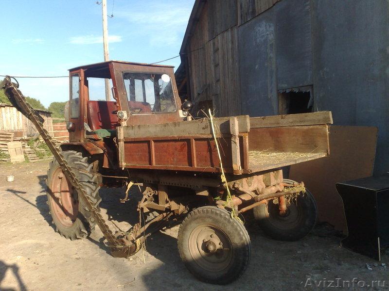 Т-16, шасси, отличное ТС в Тюмени, продам, куплю, трактора в ...