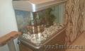 аквариум с тумбой и ракушками из моря.